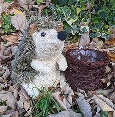 Hedgehog Planter.jpg