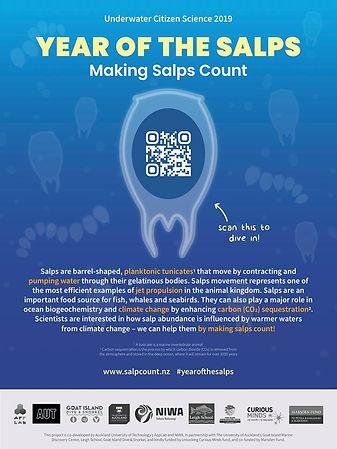 Salp app.jpg