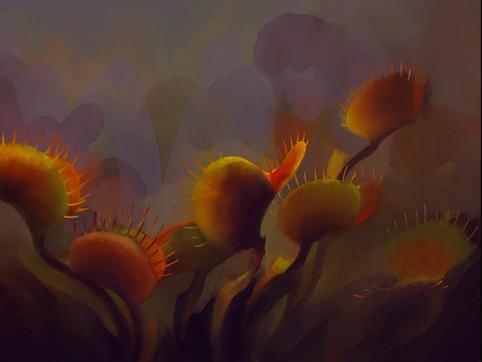 viviariums_02_Venus flytrap.jpg