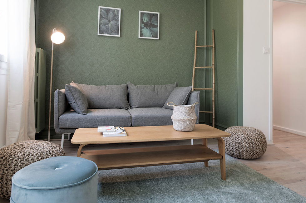 Salon ambiance nature avec ses matière naturelle et son alcôve verte pou accueillir le canapé. La décoration permet dedonner du style à vote intérieur !