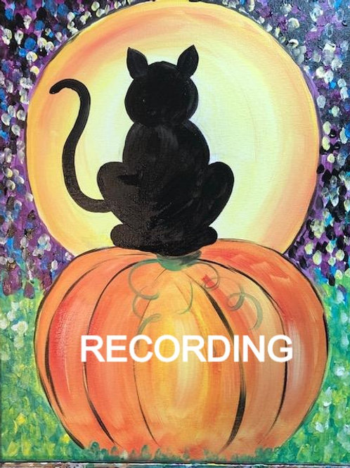 Fall Cat on Pumpkin - Live Recording