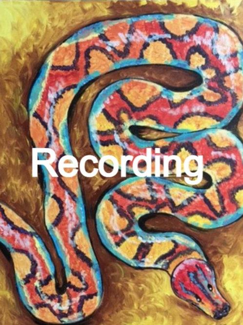 Rainbow Boa Zoom with the Zoo Recording