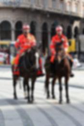 Soccorso a cavallo croce bianca genovese