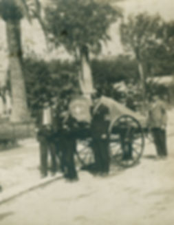 storia croce bianca genovese