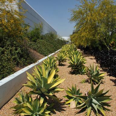 Drought & Desert Solutions