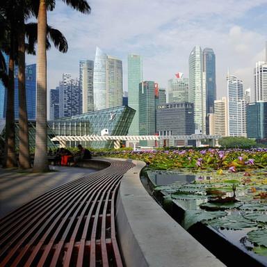 Waterfront Redevelopment