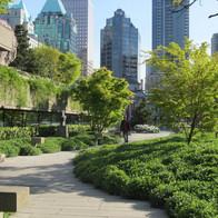 Unused Lots Into Public Parks