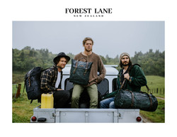 Forest Lane web pages