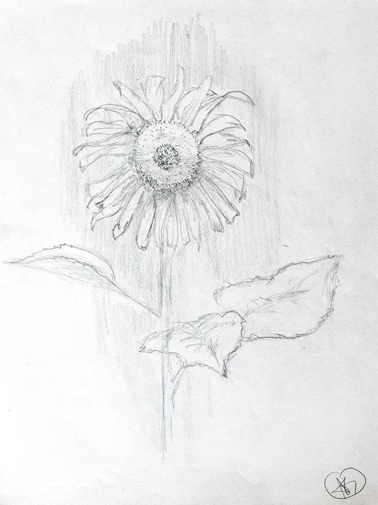 AG_Artwork_41018-13