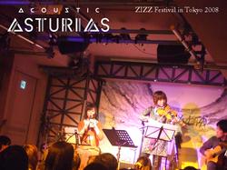 ZIZZFestival in 2008