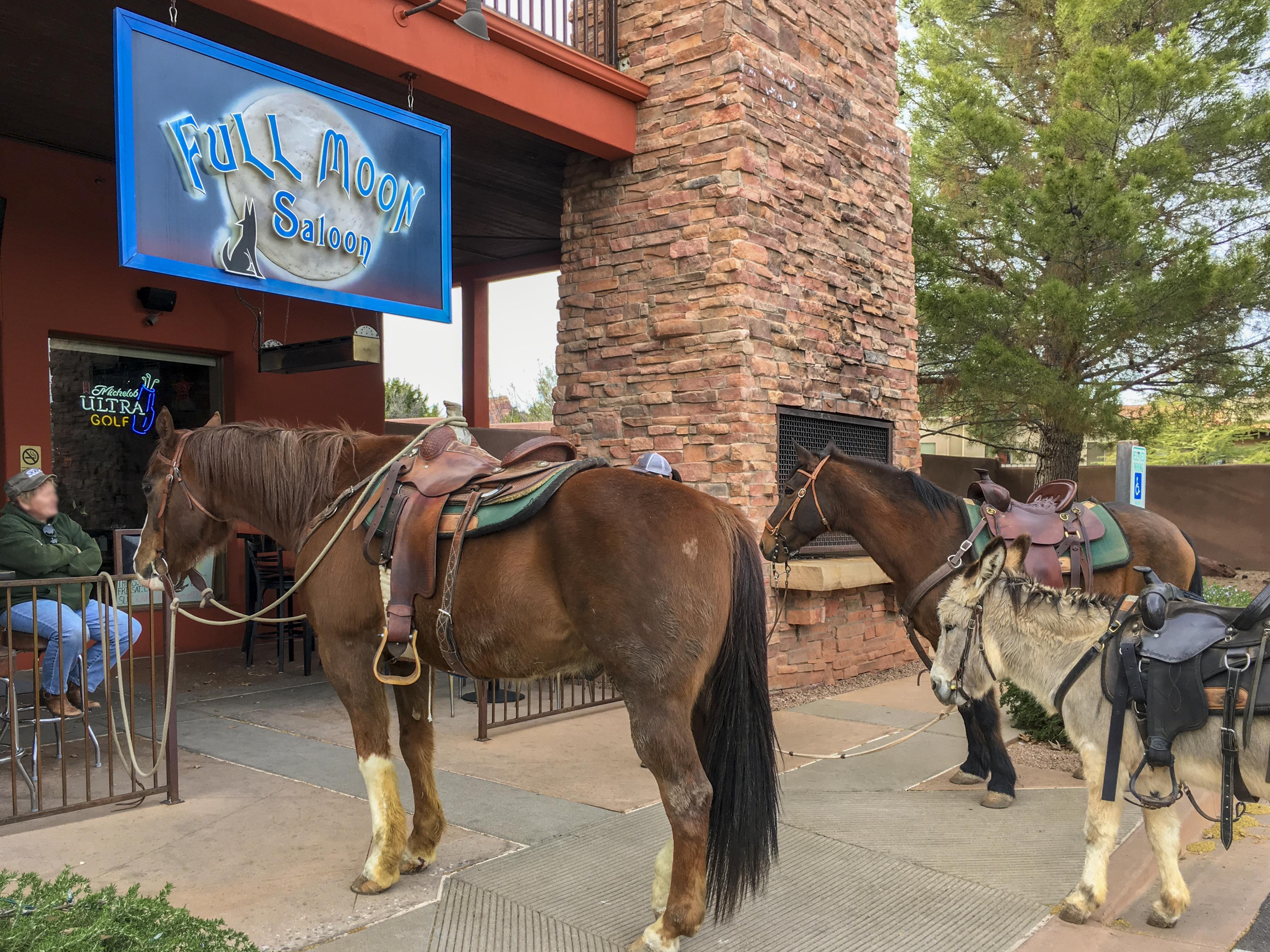 Horses FMS
