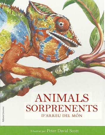 Animals sorprenents