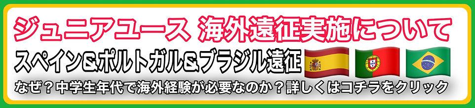 FCセジニョ岩槻