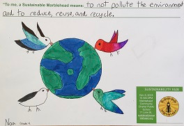 2nd Place Winner, Sustainability Poster Contest