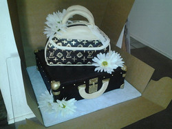 LV_purse_and_brief_case.153104615_large.jpg