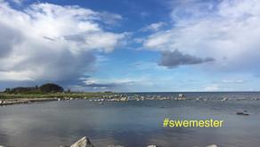 #swemester - Schweden bleiben in diesem Sommer im eigenen Land