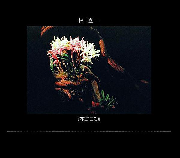 6-林.jpg