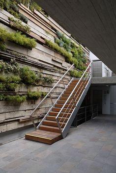 jardim-vertical-na-parede-da-escada-externa