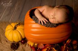 newborns ottawa