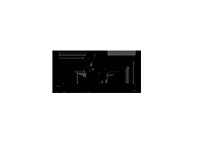 logo armani site