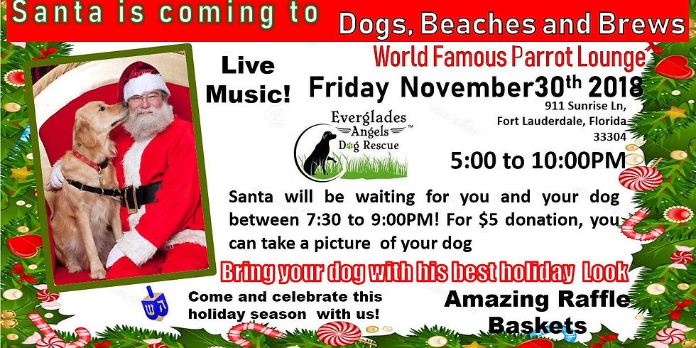 Dogs, Beaches and Brews with Santa