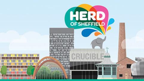 Herd of Sheffield