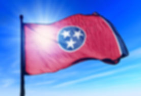 Nice TN flag small.jpg
