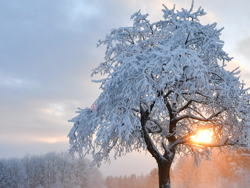 Vers un temps durablement froid et neigeux ?