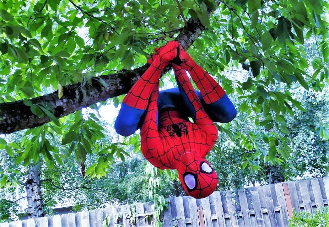 Spider Hero Man with Earth Fairy Entertainment in Portland Oregon for a birthday party or corporate