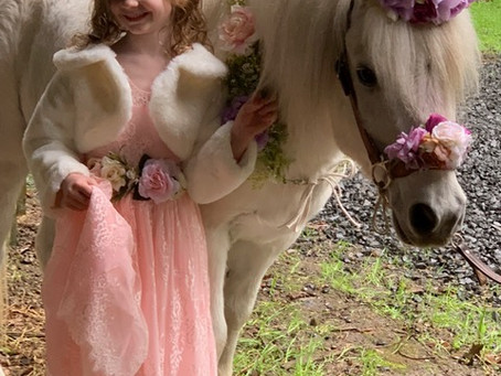Pony Rides, Petting Zoo, and Unicorn Party