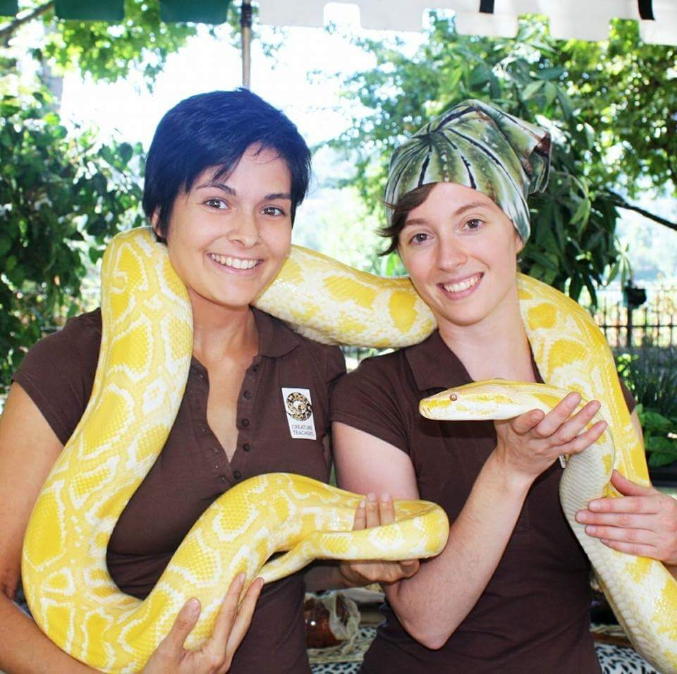 Reptile show by Earth Fairy Entertainment for birthday party, company picnic, corporate event in Por