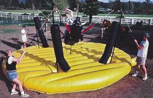 Bungee Bull Ride Game with Earth Fairy E