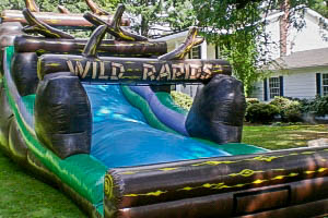 Wild Rapids Water Slide with Earth Fairy