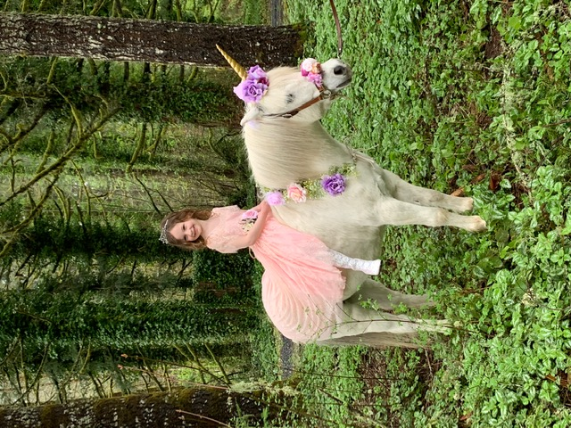 Unicorn Party, live animals wiith Earth