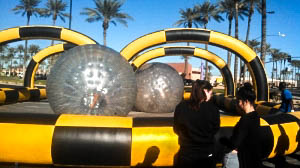 Rat Race Hamster Ball Game with Earth Fa