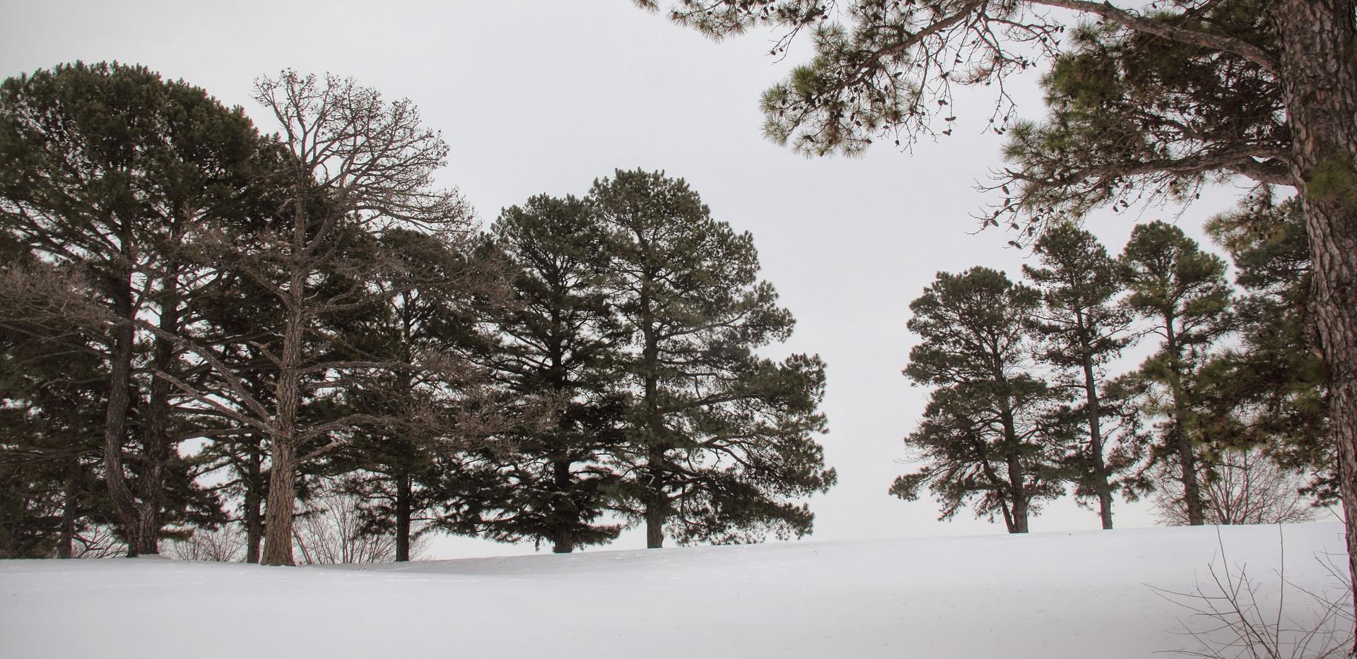 A_Golf_Snow_01.jpg