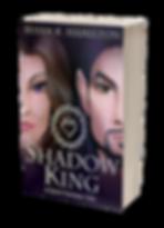 3Dbook_HiRes_Shadow_paperback_Transparen