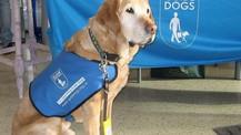 Scartho Raises £5000 for New Guide Dog