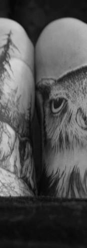 Temporary Owl Tattoo