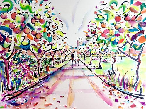 Apple Tree Walk - Fulham Palace Walled Garden