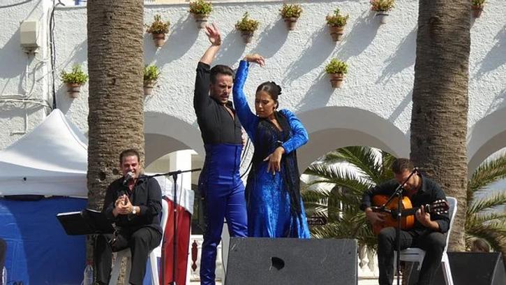 flamenco-1924139__340.webp