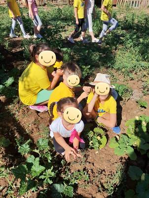 scuola contadina.jpg