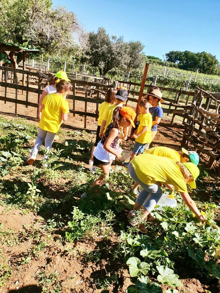 scuola contadina2.jpg