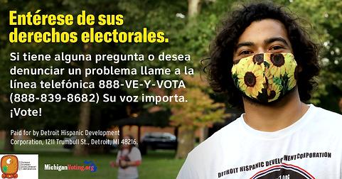 Vote!-Static-Spanish-FBinsta.png
