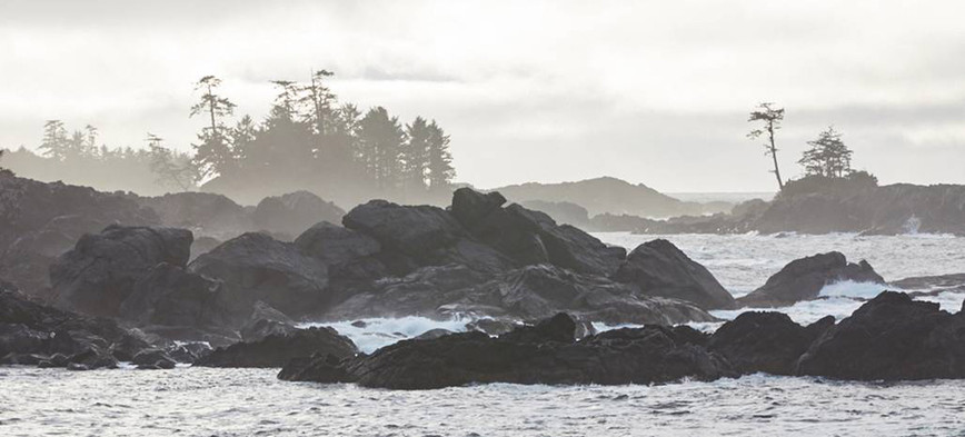 Ucluelet Shores