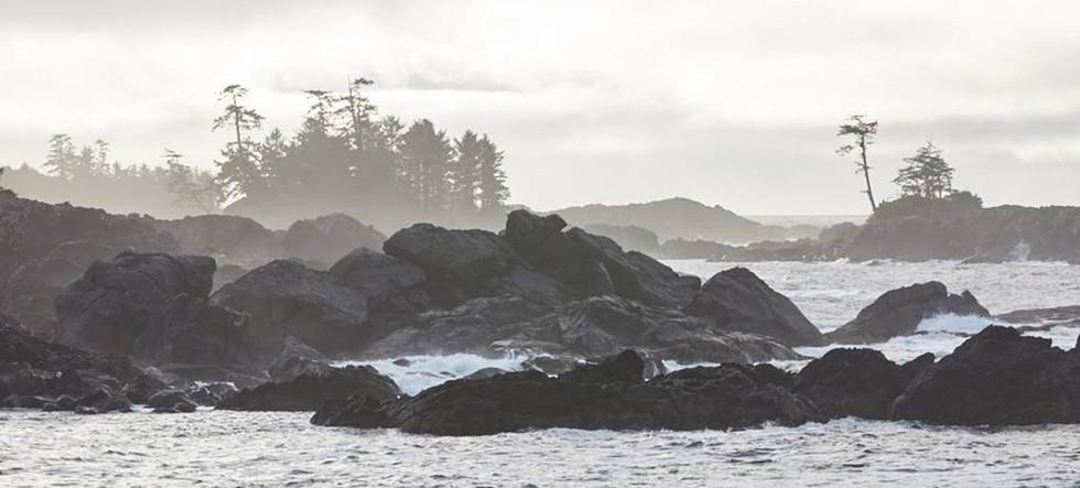 Ucluelet Shores