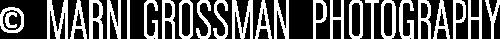 Marni Grossman Logo White.png