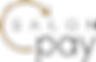 salonpay_logo-1.png