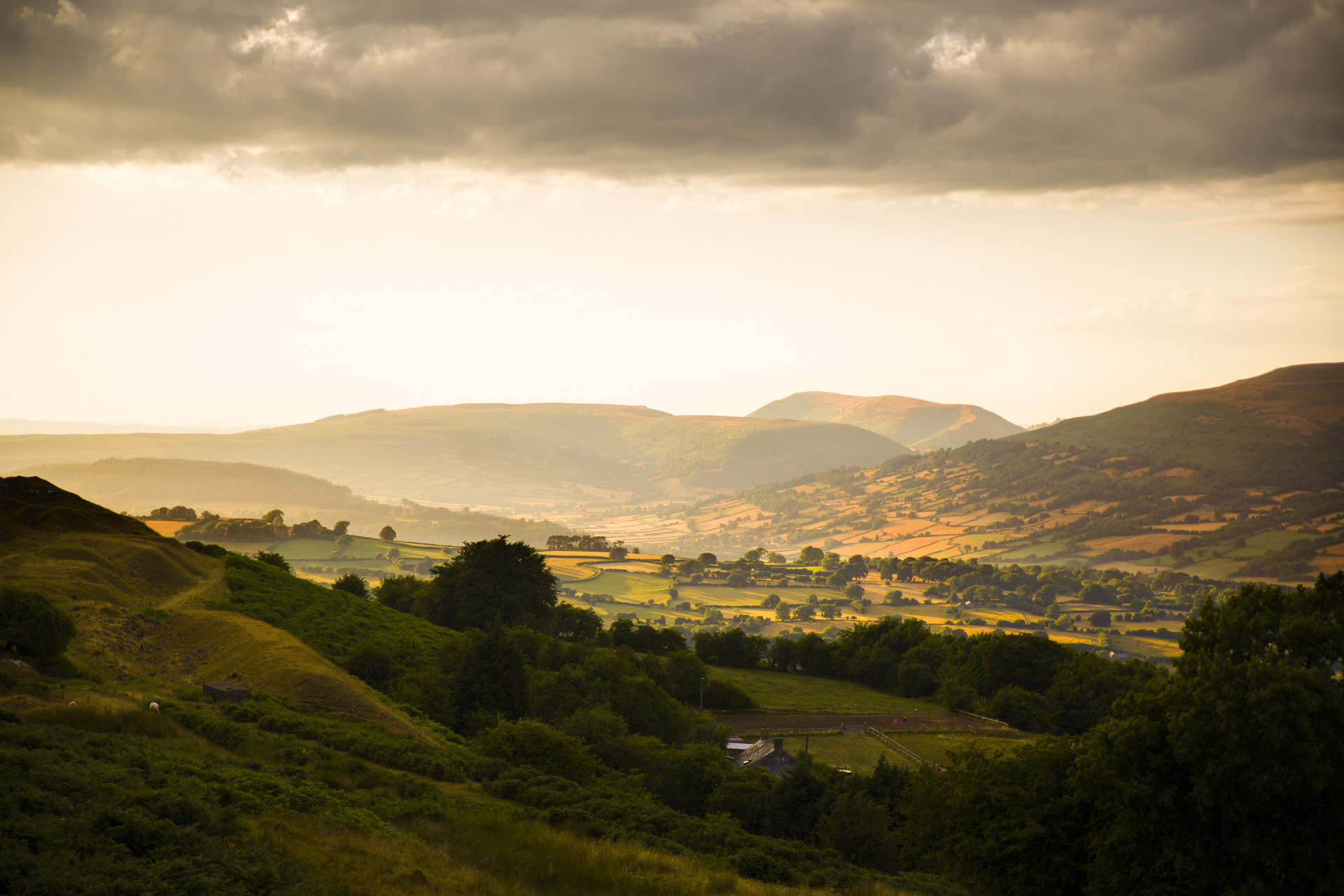 Golden Hour Powys