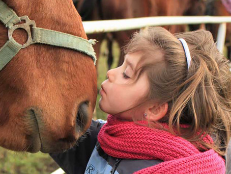 Horses for Hope: Equine-Assisted Therapy and Learning Centre
